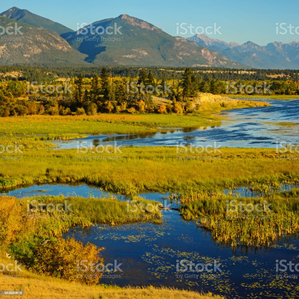 The Columbia Wetlands in Fall or Autumn - Royalty-free Autumn Stock Photo