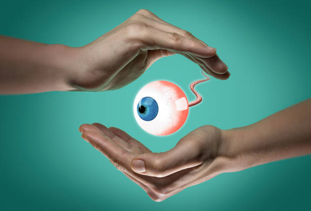 The concept of a healthy eyes. stock photo