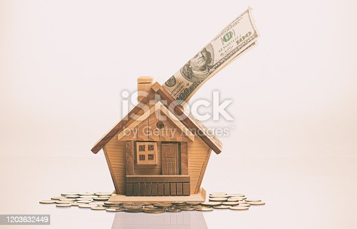 A small wooden detailed piggy bank, and a 100 bill. The concept of accumulation of money for habitation purchase