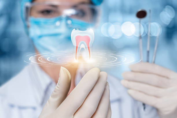 The concept of dental treatment. The concept of dental treatment. The doctor looks at the model of the tooth. dental health stock pictures, royalty-free photos & images