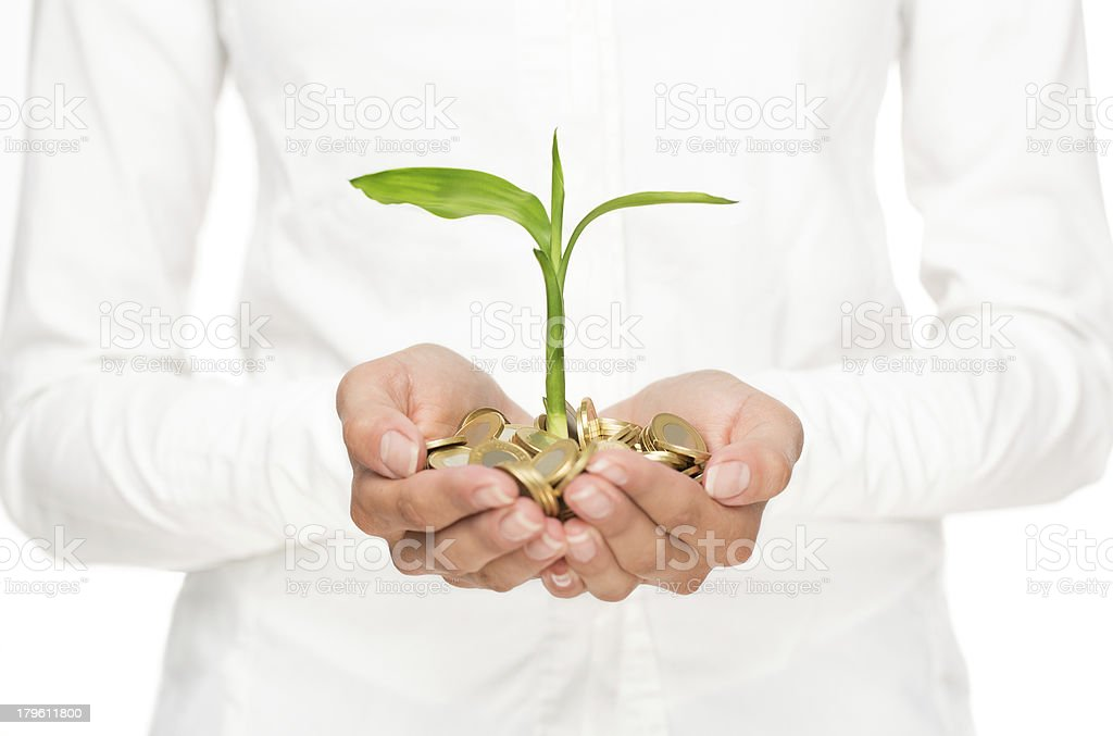 The concept of investment of money in hands of woman stock photo