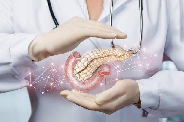 The concept of protection of the pancreas . stock photo