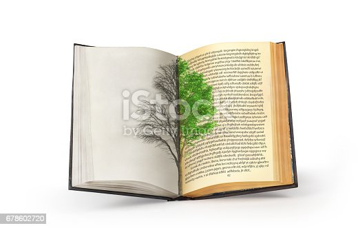 istock The concept of reading. Dual tree published in an open book. The concept of acquiring knowledge. 678602720