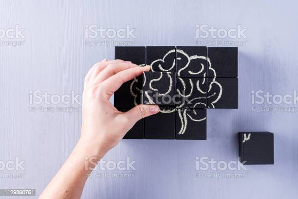 The concept of the human brain education science and medical concept picture id1129860761?b=1&k=6&m=1129860761&s=612x612&h=uexu 46iq leyxsgxp6ggthwyzlqkrv nwrkpqpikzw=
