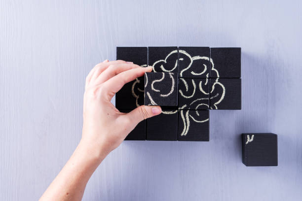 The concept of the human brain. Education, science and medical concept.  Brain drawn in chalk on black cubes. stock photo