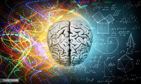 585087100 istock photo The concept of the human brain. 1043035586