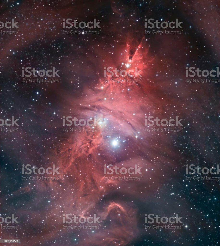 Der Kegel-Nebel und der Weihnachtsbaum-Cluster (NGC 2264) im Sternbild Monoceros – Foto
