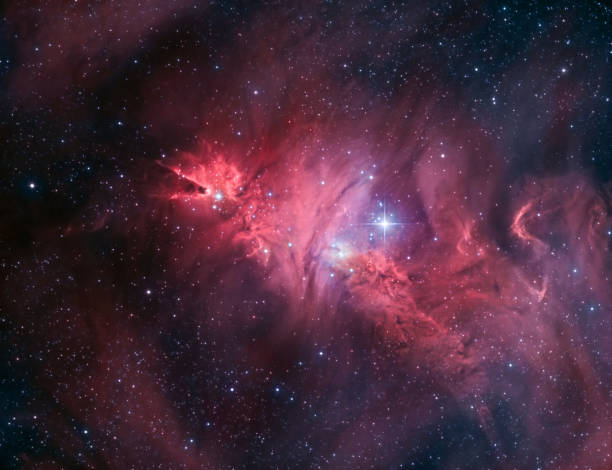 Der Kegel-Nebel, NGC 2264 – Foto
