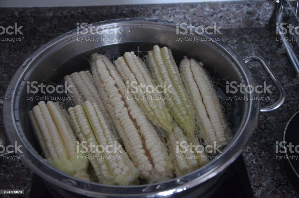 Кукуруза в кастрюле варится. stock photo