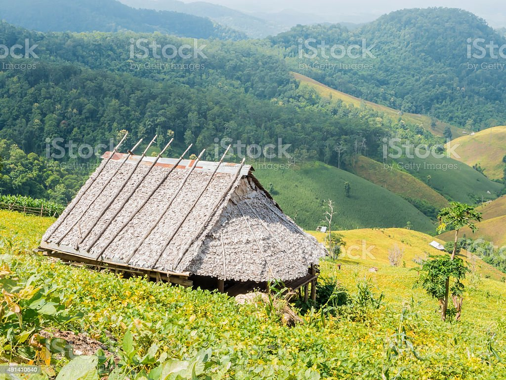 The country bamboo hut stock photo