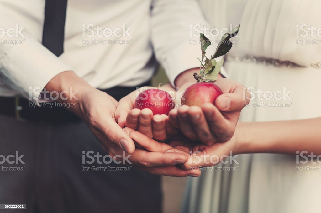 the couple holding two red apples in hands. Close focus. Love story idea stock photo