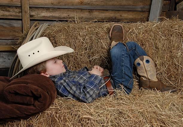 der cowboy - traumscheune stock-fotos und bilder