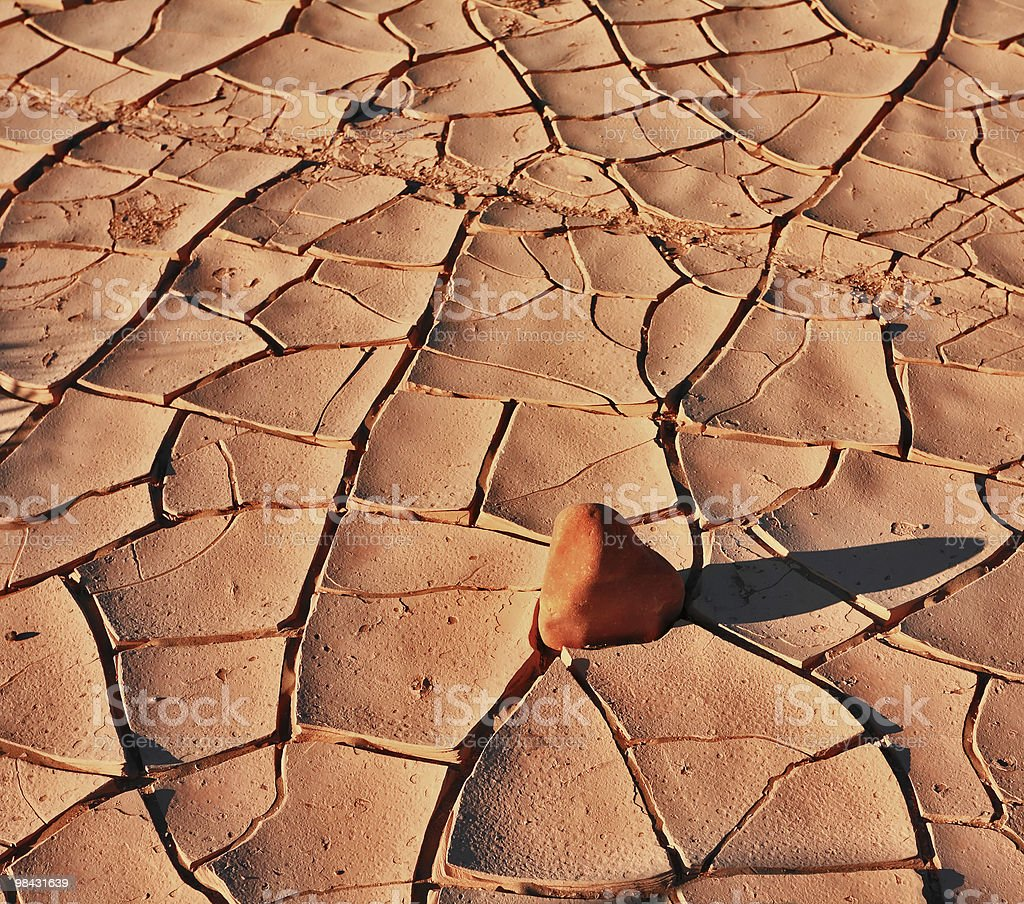 The cracked ground in National park Dead Walley royalty-free stock photo