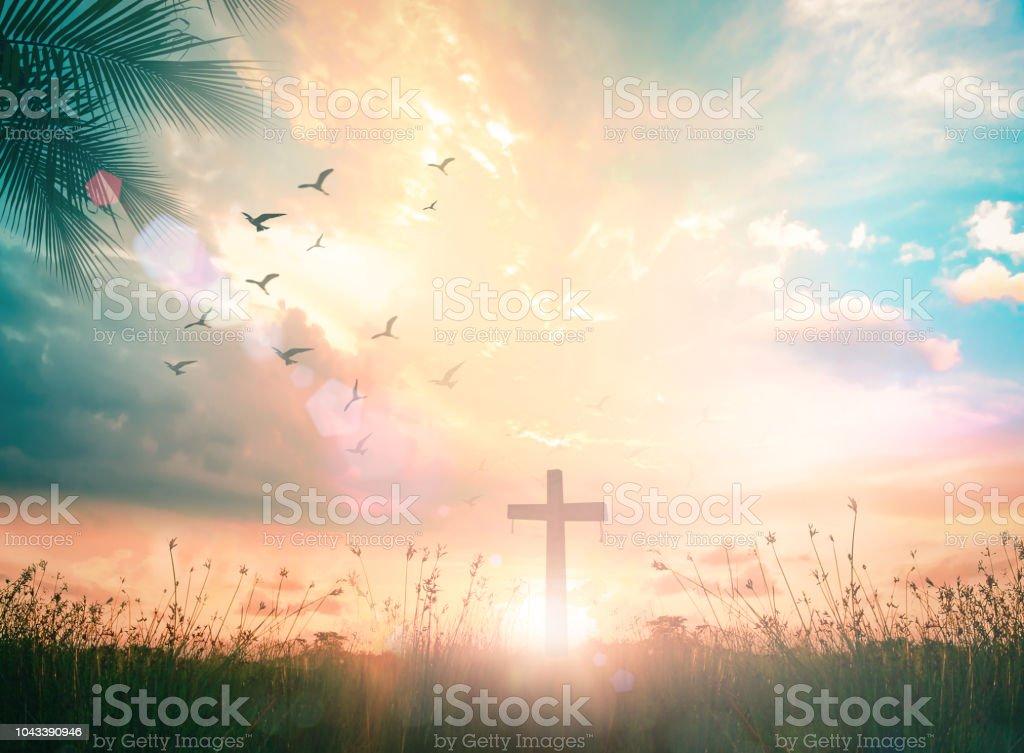 The cross at autumn background - Zbiór zdjęć royalty-free (Biblia)
