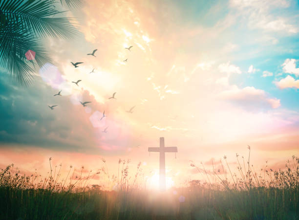 The cross at autumn background Resurrection of Jesus Christ concept: Silhouette cross on meadow autumn sunrise background religion stock pictures, royalty-free photos & images