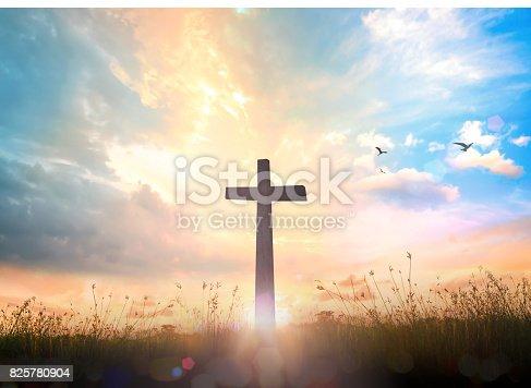 istock The Cross 825780904