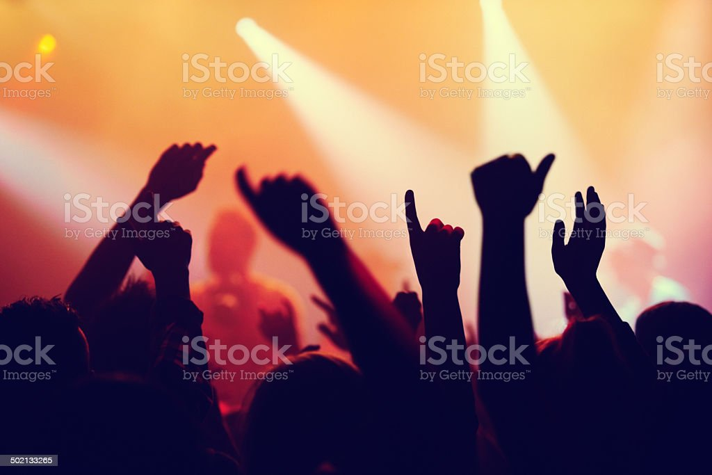The crowd is going crazy stock photo