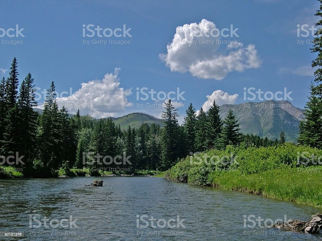 The Crowsnest, a Fly Fishing River royalty-free stock photo