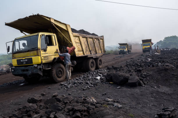 de vloek van steenkool - aas eten stockfoto's en -beelden
