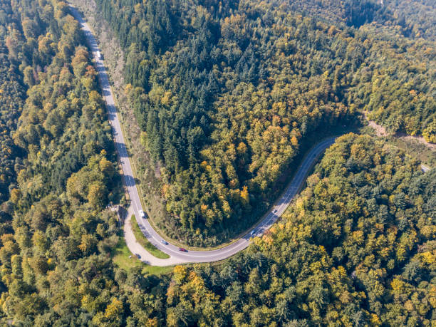 The curved Black Forest Road the bird's eye view of the curved Black Forest Road (Bundesstrabe No. 500) in MALSCHBACH of Germany in September 2017. black forest stock pictures, royalty-free photos & images