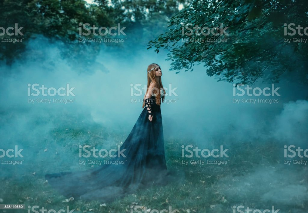 The dark queen of elves stock photo