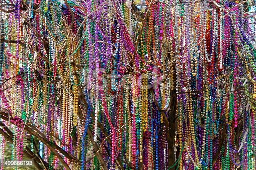 Beads hanging from a tree folowing mardi gras in New Orleans.