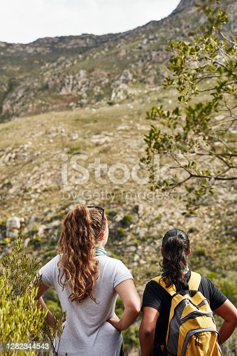 Rearview shot of two young women admiring the view while out hiking in nature