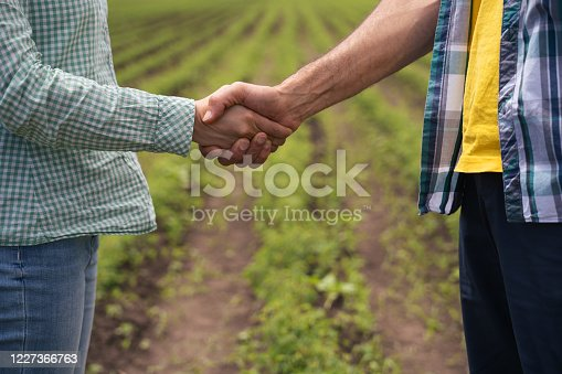 Agreement. Completing a contract that is the end of a long teamwork. Good work, good business. Decorative roses producer and a business partner handshaking on the field.