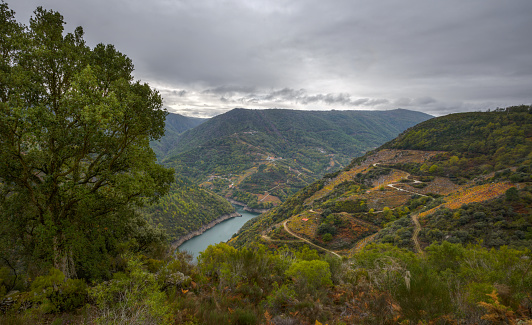 The deep valley of the river Sil