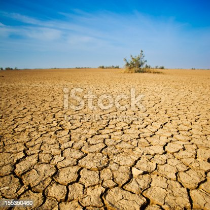 Cracking Dirt In The Desert Of Western India