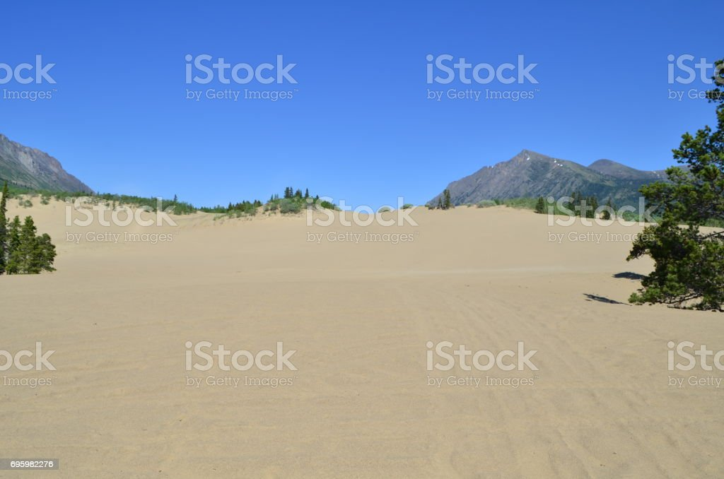 The desert in Yukon stock photo