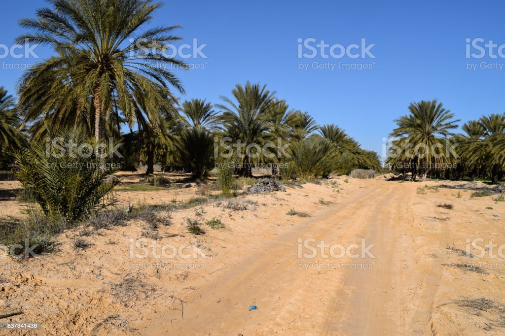 The desert land of North Africa. Tunisia stock photo