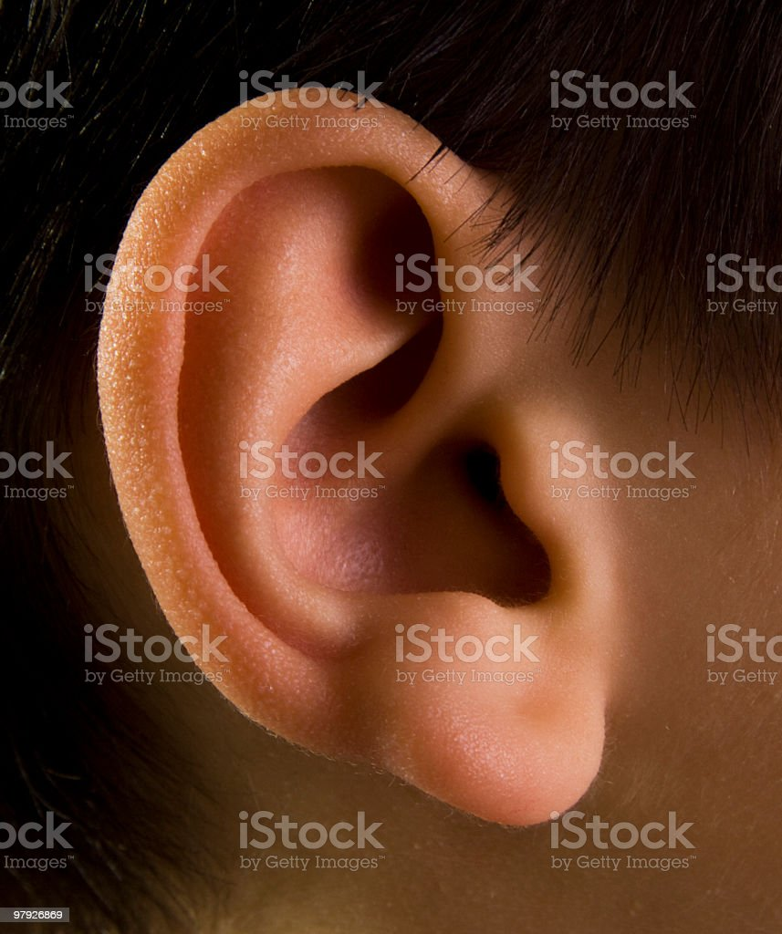 The detailed picture of a child's ear royalty-free stock photo