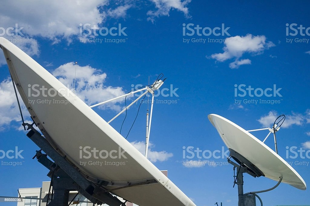 The Dish royalty-free stock photo