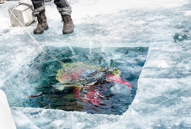 the diver plunged into the hole in the ice of lake Baikal stock photo