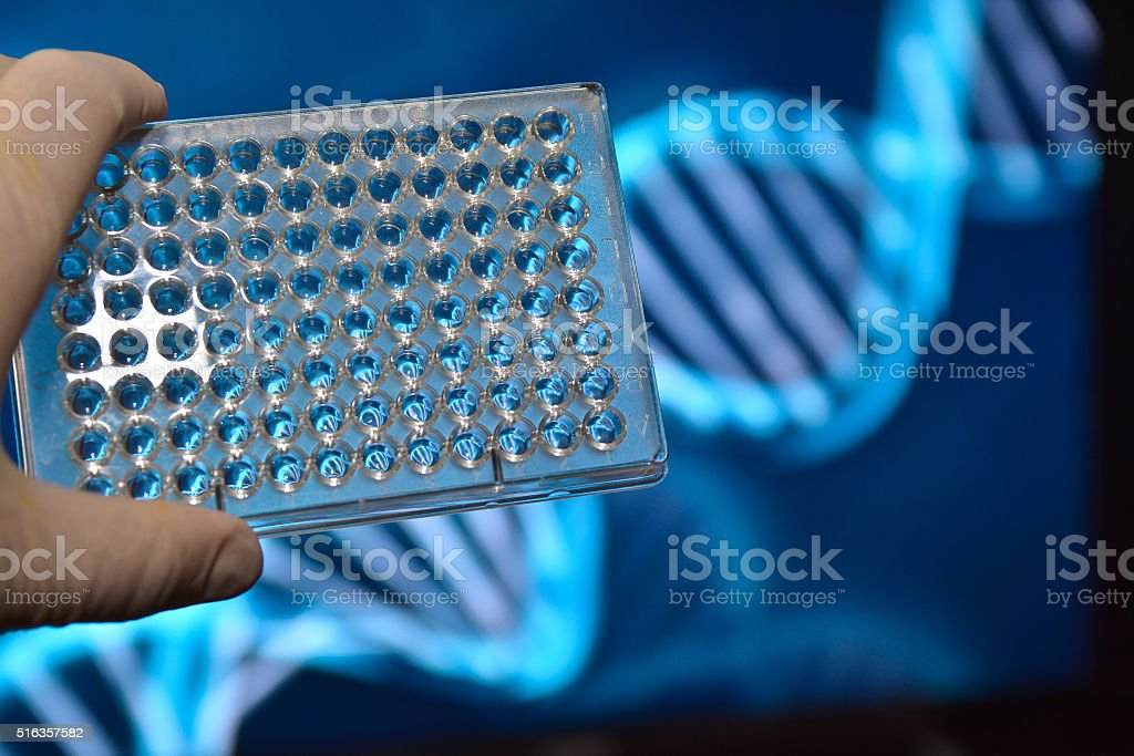 The DNA testing. stock photo