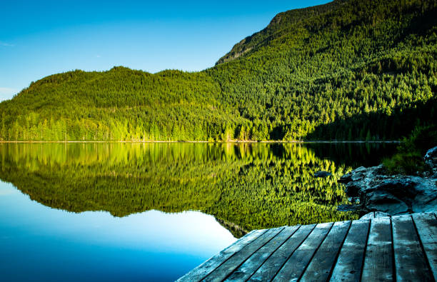 The Dock at Raily Day Lake with Reflection of Trees and Sky stock photo