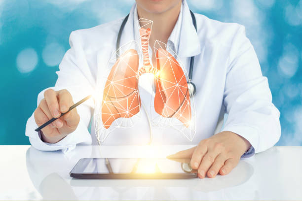 The doctor on the virtual screen shows a model of a human lung. stock photo