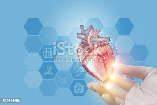 istock The doctor showing is heart in hand . 695614488