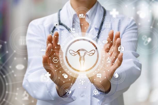 The doctor shows the icon of the female uterus . stock photo