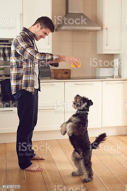 The dog whisperer picture id615107172?b=1&k=6&m=615107172&s=612x612&h=pol0j0r7r4ojecf p9ugumzcfjlojdjczpdotxxz1um=