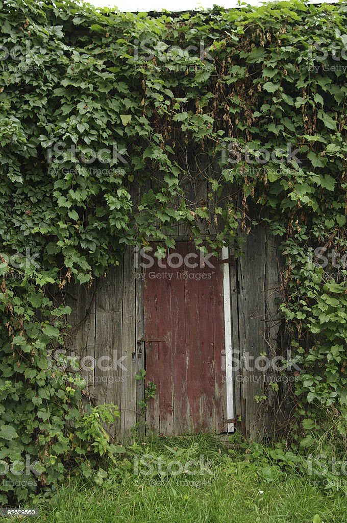 The Door - Royalty-free Color Image Stock Photo