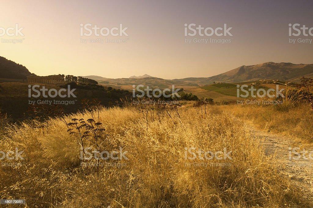 The Doric temple of Segesta stock photo