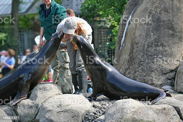 """""""Two sea lions kiss trainer at Central Park Zoo, New York City."""""""