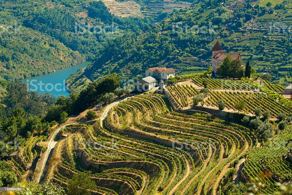 The Douro river stock photo
