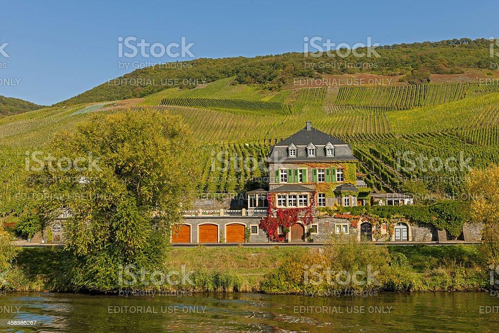 Die Dr. lockern Weingut auf der Mosel Valley - Lizenzfrei Bauwerk Stock-Foto