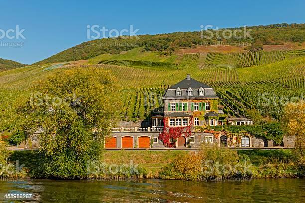Die Dr Lockern Weingut Auf Der Mosel Valley Stockfoto und mehr Bilder von Bauwerk