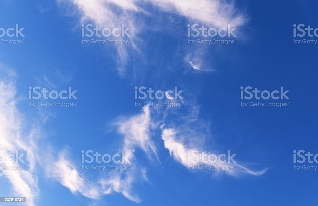 The Dragon and the mermaid on blue sky stock photo