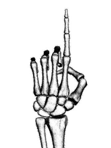 istock The drawn skeletal hand. Illustration. 1218639750