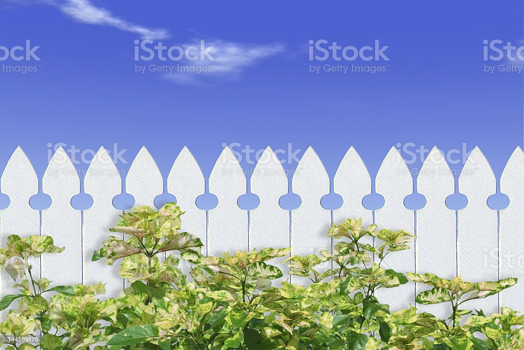 The Dream royalty-free stock photo